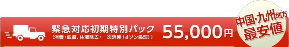 緊急対応初期特別パック 55,000円 中国・九州地方最安値
